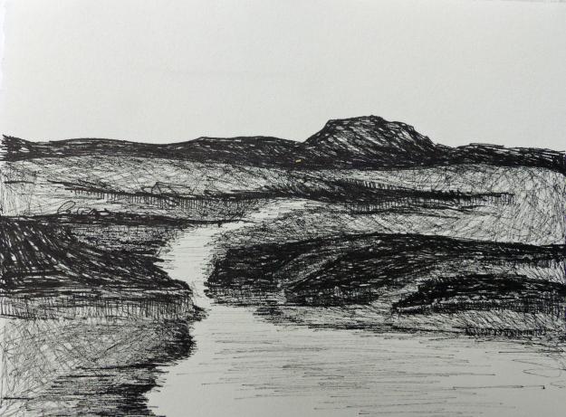 Drawn cilff landscape Debbie P1000720 lyddon sound