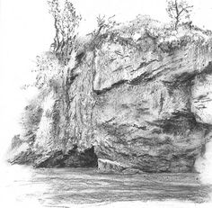 Drawn rock realistic Realistic more and Cliff Plants