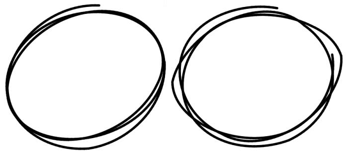 Drawn circle Javascript Snapshot simulation  Handdrawn