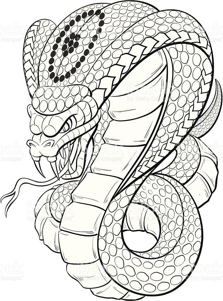 Drawn cobra Cobra Best Drawing Drawing Pencil
