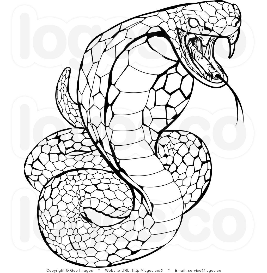 Drawn snake spitting cobra Them You The than King