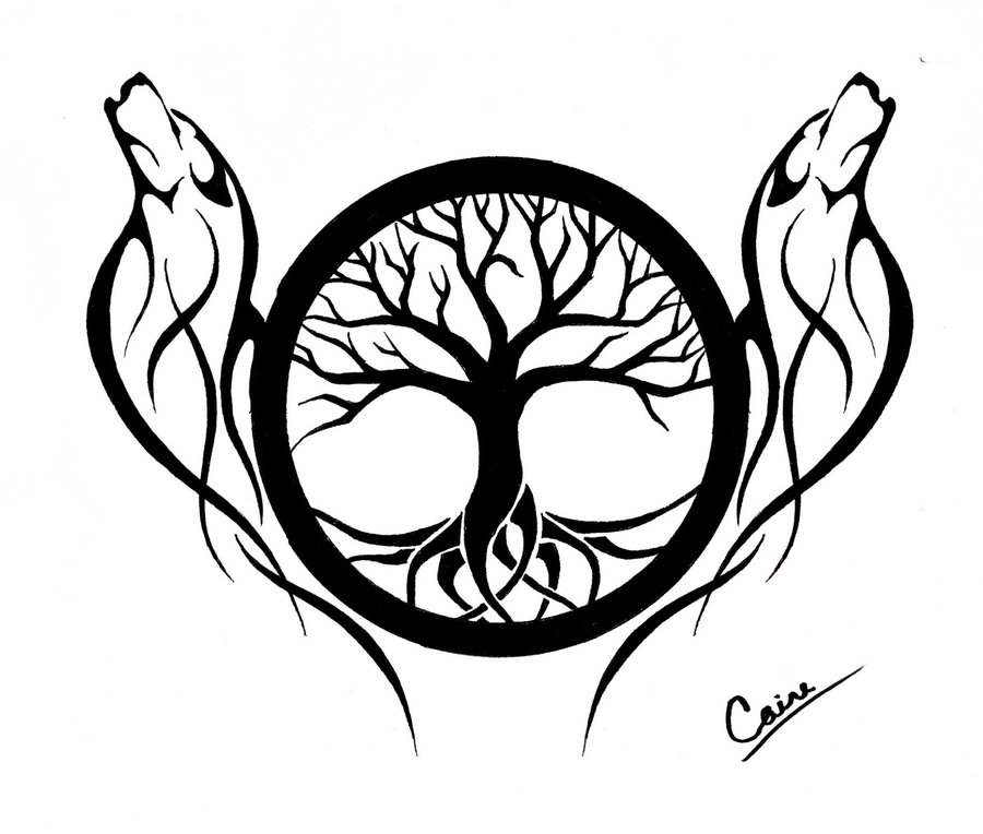 Drawn compass tree life By Wolf CalamityMoon Another Wolf