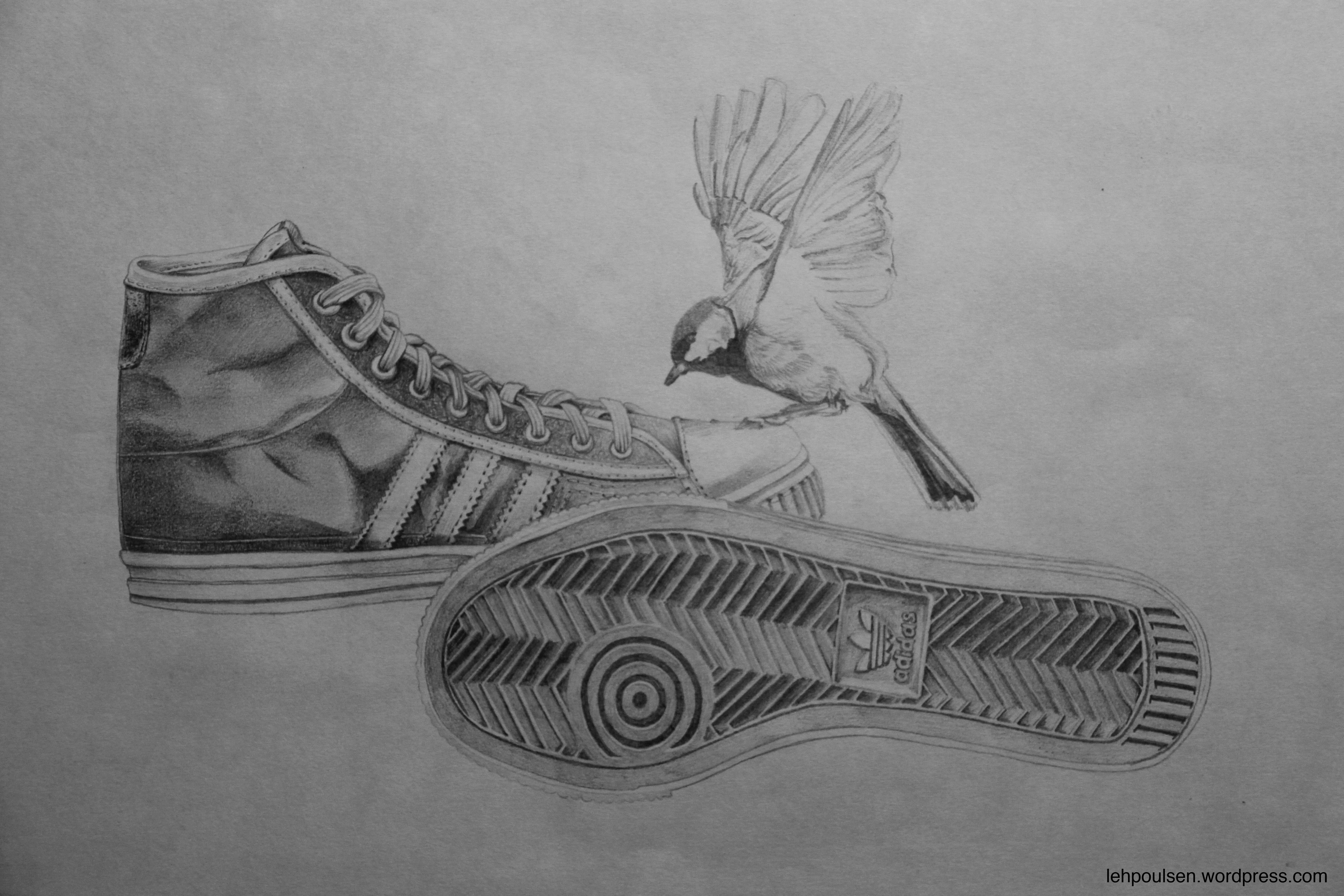 Drawn converse adidas shoe Illustration shoe Poulsen sneakers sneakers