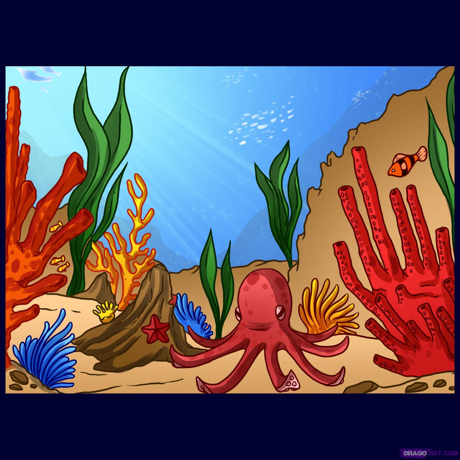 Drawn coral reef How Other Draw Places Reef