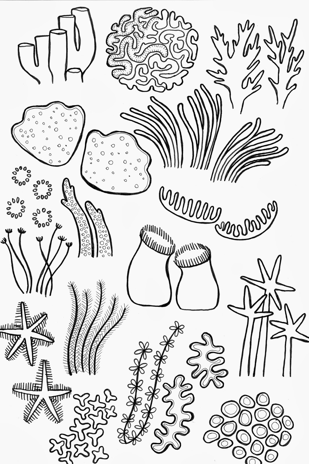 Drawn coral reef Fabric bloggery: Reef Fabric Barrier