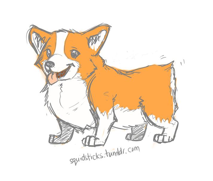 Drawn corgi  SketchDaily : August Dog 14th