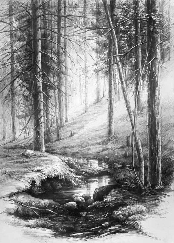 Drawn scenic forest Ideas DeviantArt by Forest Best