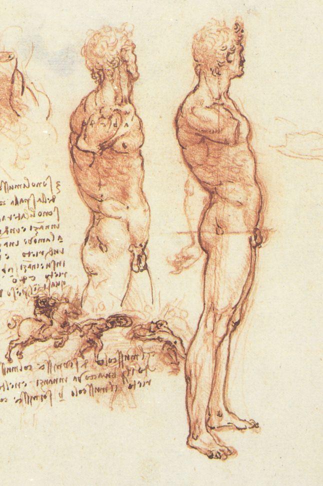 Drawn still life person Figure Wikipedia drawing