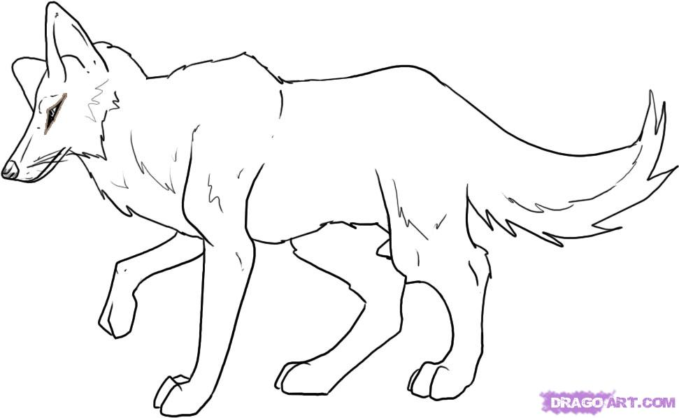 Drawn coyote #9