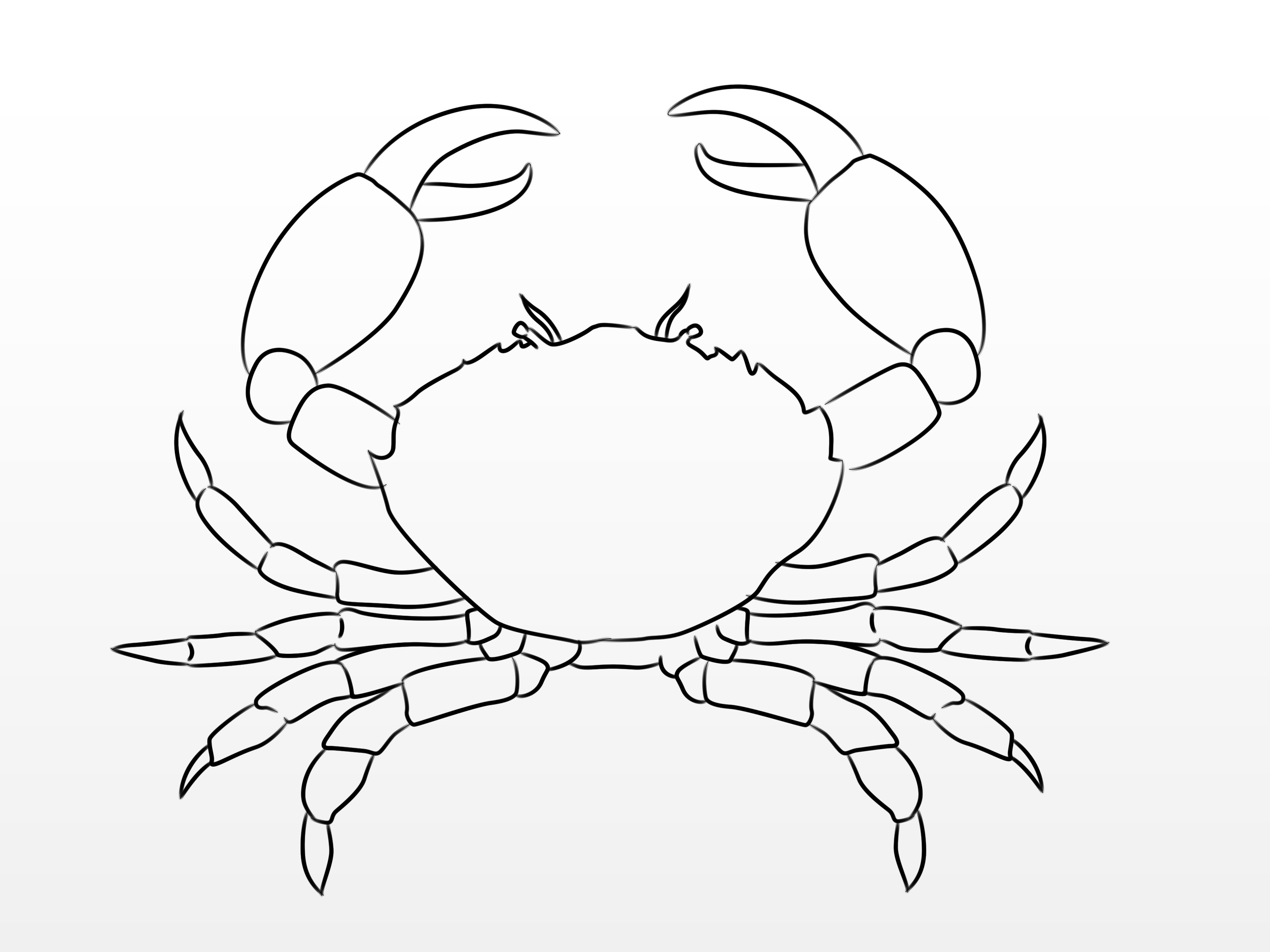 Drawn crab #3