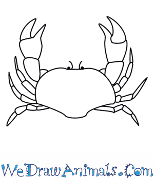 Drawn shrimp simple How Crab To  A