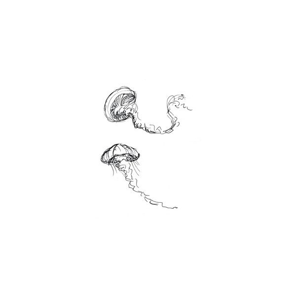 Drawn jellyfish cute baby Drawing ideas liked Jellyfish on
