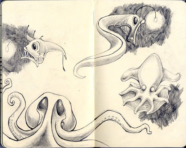 Drawn sea life deep sea creature DeviantArt Deep by ErinSchwaner Creatures