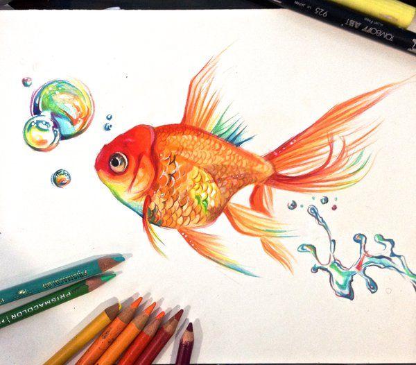 Drawn goldfish fancy goldfish Deviantart Goldfish Rainbow carassius ideas