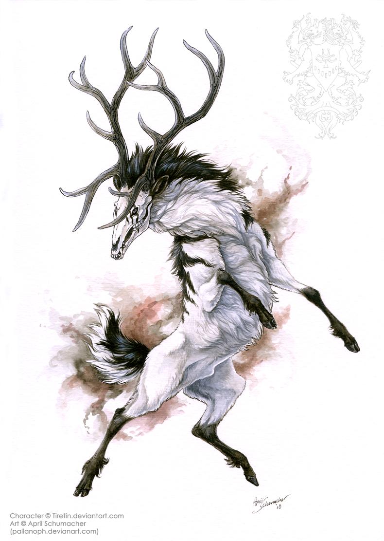 Drawn stag deviantart  on deviantART on Creatures