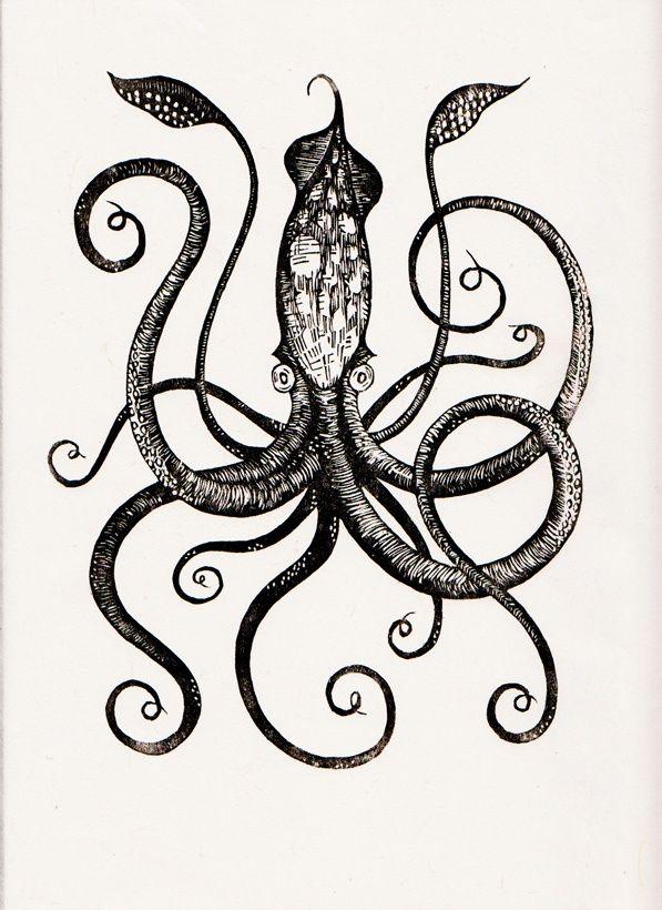 Drawn squid vintage 12 9 ideas on Pinterest