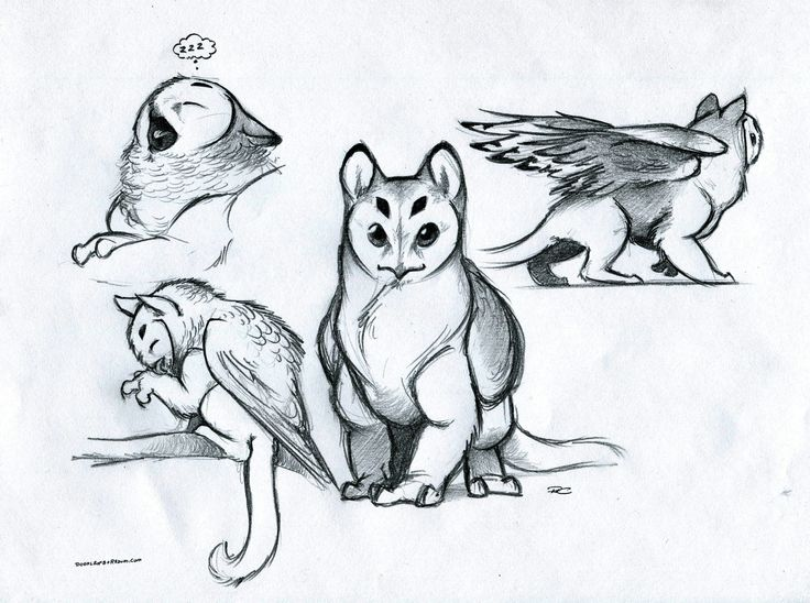 Drawn griffon magical creature Poses The Pinterest  Owl