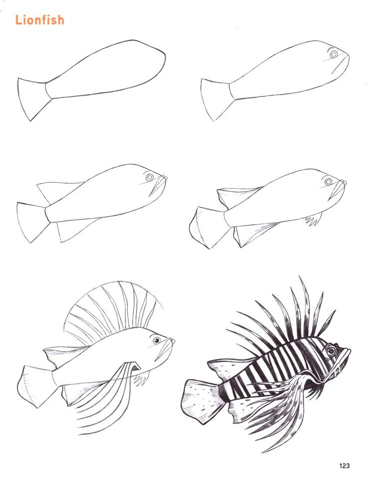 Drawn ocean ocean life 2012 best traditional How on
