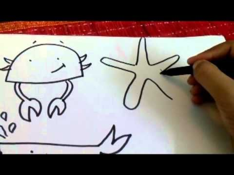 Drawn sea life aquatic animal On 8:00▶ 131 Pinterest How