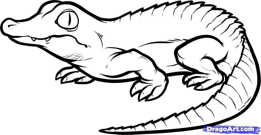 Drawn reptile Step Crocodile How crocodile Step