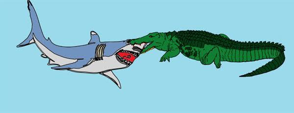 Drawn shark crocodile Shark Croc: Ultimate Bond Non