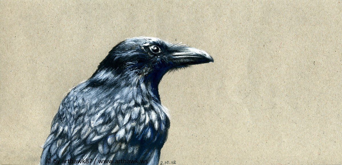 Drawn crow By by arthawk87 Crow on