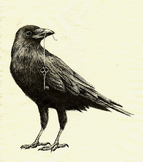 Drawn crow Crow Pencil Realistic Crow Images