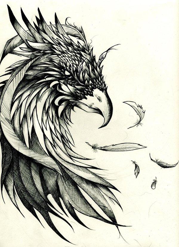 Drawn hawk mean Designs crow tattoo Designs montebourg