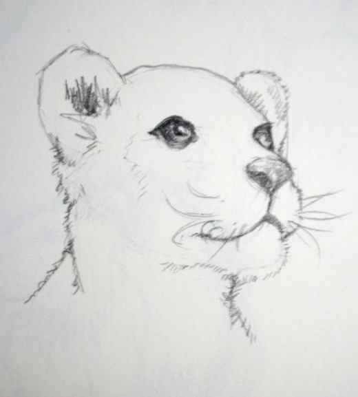 Drawn cub Lion cub a Pinterest draw