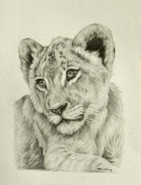 Drawn cub Step Lion  12x9