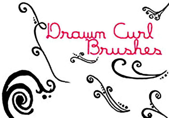 Drawn curl Photoshop Brushes Curl Drawn Free