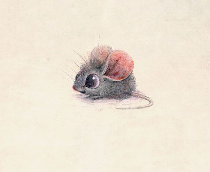 Drawn rodent cute Incredibly Cute ideas By Hanson
