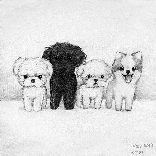 Drawn puppy real dog Pinterest drawing Cute Cute drawings