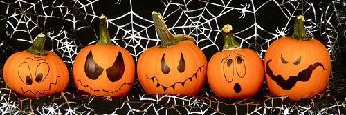 Drawn pumpkin gourd Mini Pumpkins or Using Halloween