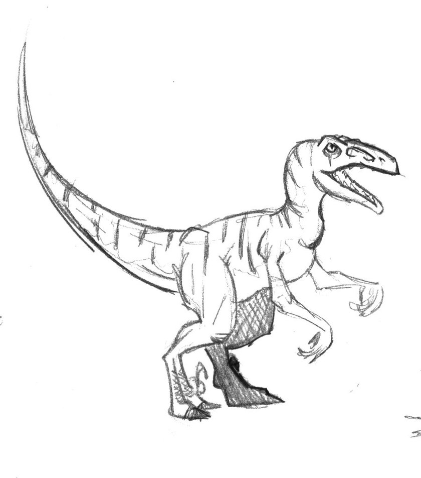 Drawn cute velociraptor By DeviantArt velociraptor by wang