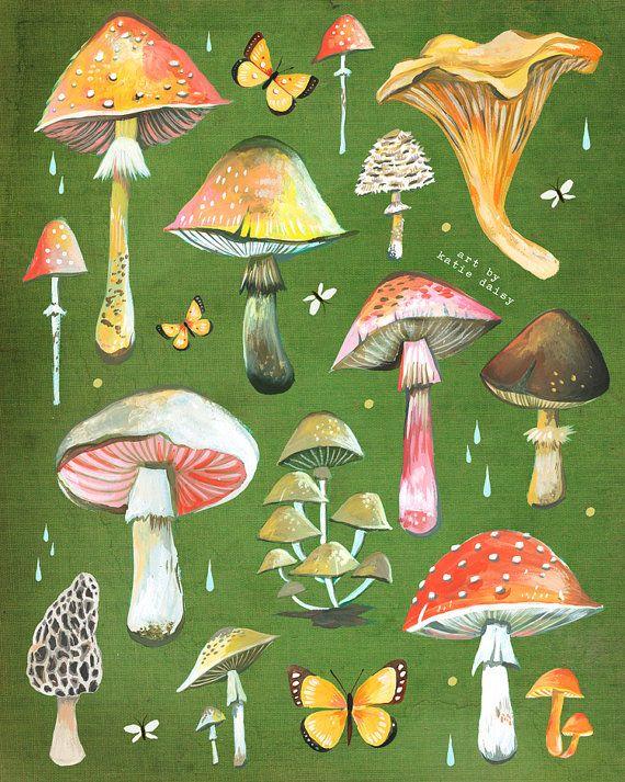 Drawn mushroom character The Field Chart Identification 8x10