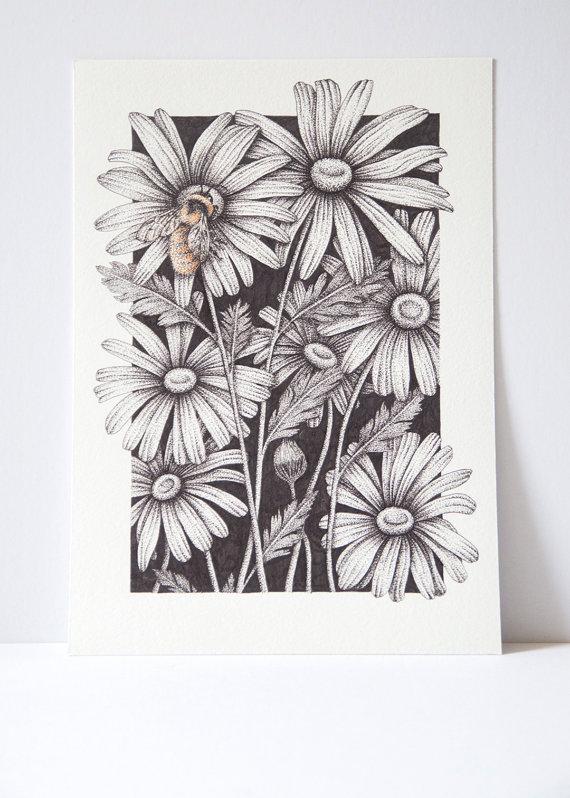 Drawn daisy indie flower #14