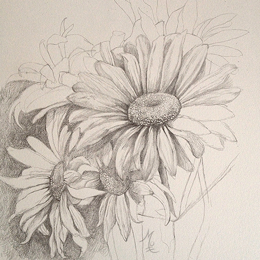 Drawn daisy realistic My Mottram by Mottram Pinterest