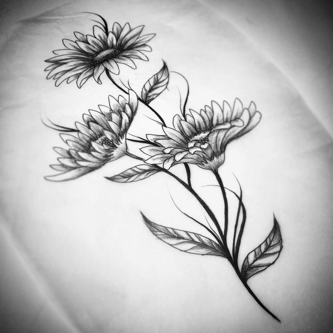 Drawn daisy realistic Download Flower Flower Drawings Daisies
