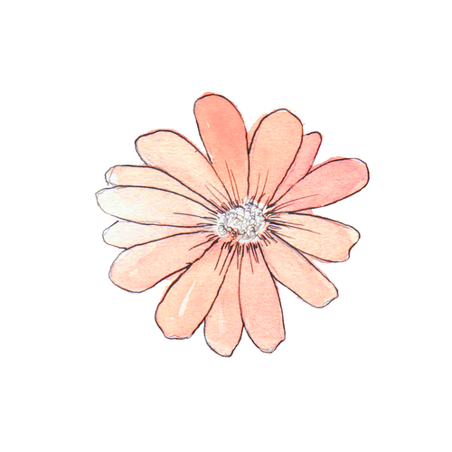 Rose clipart png tumblr #5