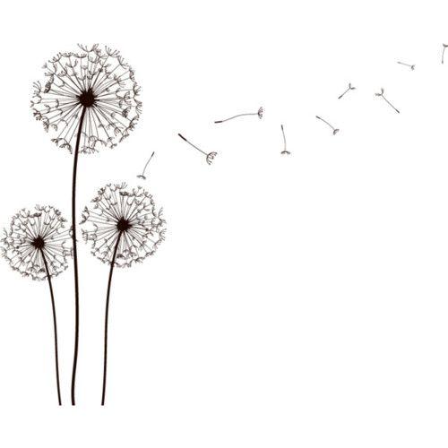 Drawn dandelion #1