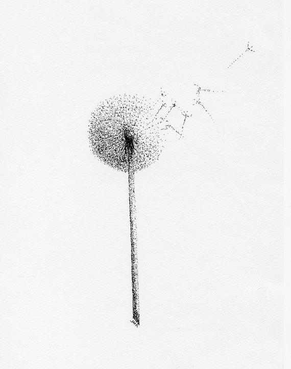 Drawn dandelion Drawing Dandelion Dandelion Realistic Sketch