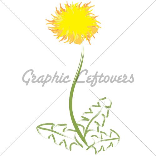Drawn dandelion GL Hand Dandelion Dandelion Images
