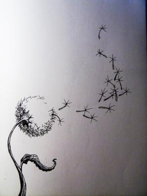 Drawn dandelion Draw  dandelion on paper?