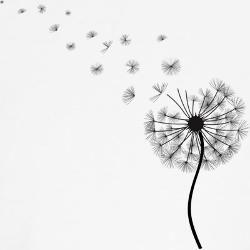 Drawn dandelion #2