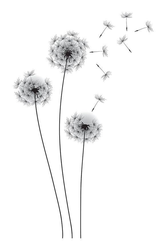 Drawn dandelion #3