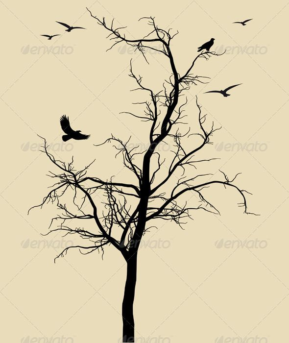 Drawn dead tree On and trees about Find