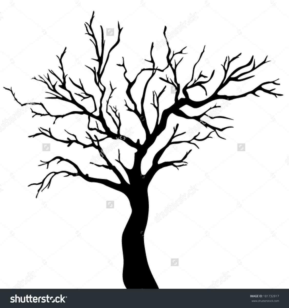 Drawn dead tree Ngorong drawing club ›