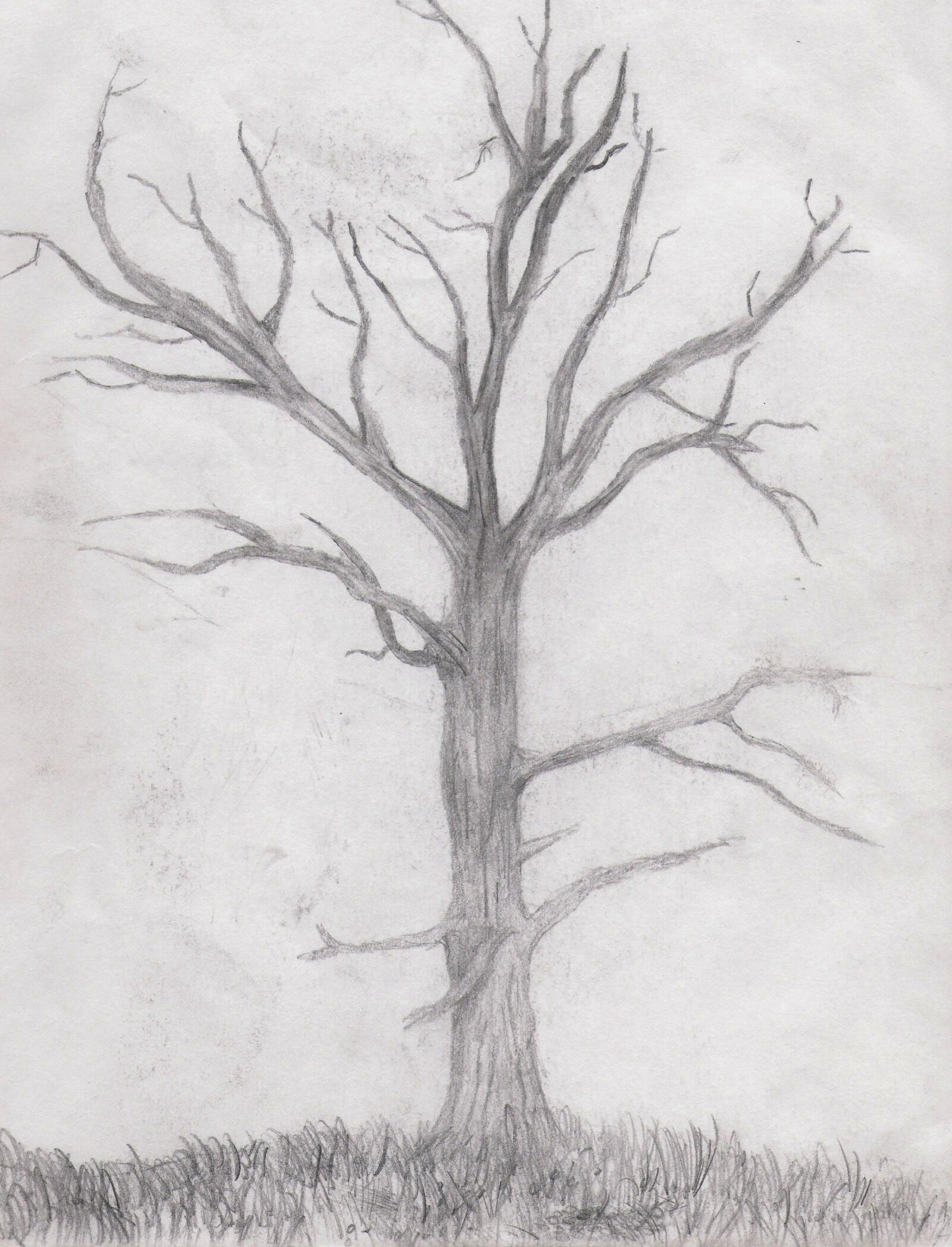 Drawn dead tree Tree Nic1675 DeviantArt Nic1675 Dead