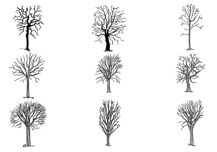 Drawn dead tree Pack Tree Photoshop Pack Hand
